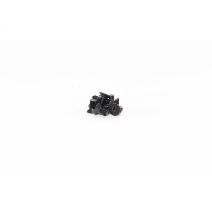 FLAT HEAD SCREW 3X6 (10pcs)
